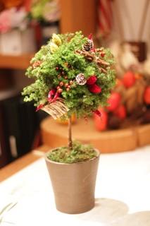 2.クリスマストピアリー.JPG