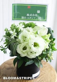 Bアレンジ 札アリ (15).jpg