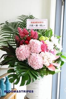 アレンジ(札アリ) (9).jpg