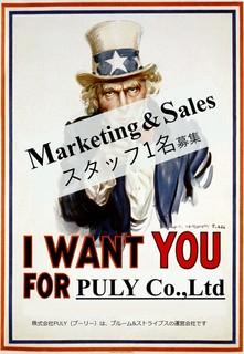 セールススタッフ募集のポスター2.jpg