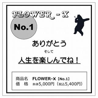 FLOWERX_1.jpg