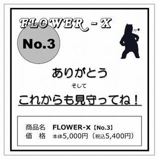 FLOWERX_3.jpg