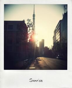 TOKYO TOWER 朝日.jpg_effected.jpg