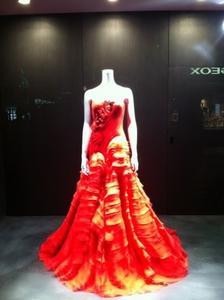 VERA dress.JPG