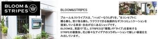 home_bpc_b&s.jpg